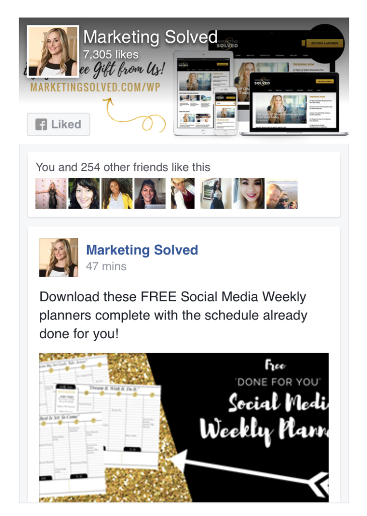 Facebook Like Box // Marketing Solved // How to Get More Facebook Likes
