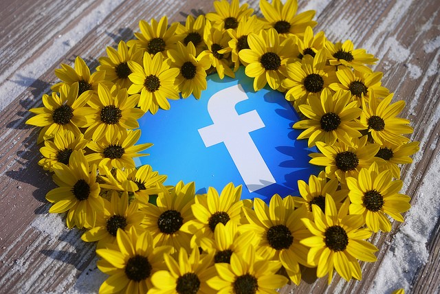 facebook sunflower heart