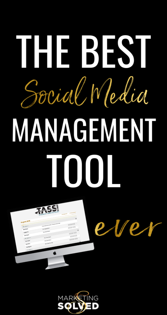The Best Social Media Management Tool For Small Businesses - TASSI. Marketing Solved